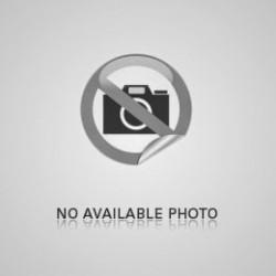 Ventilator exhaustor cu inchidere Sal EVZ 100/S